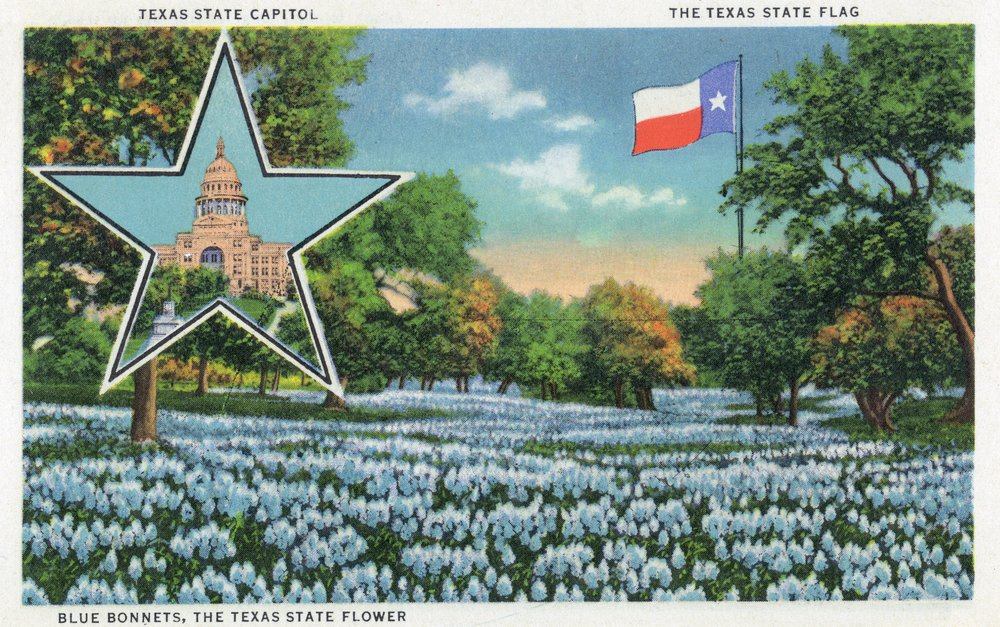 Texas - Exterior View of the State Capitol, the Flag, and a Field of Blue Bonnets (24x15 Gallery Quality Metal Art)