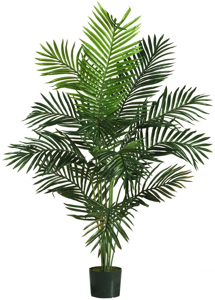 Nearly Natural 5259 Paradise Artificial Palm Trees, 5-Feet, Green