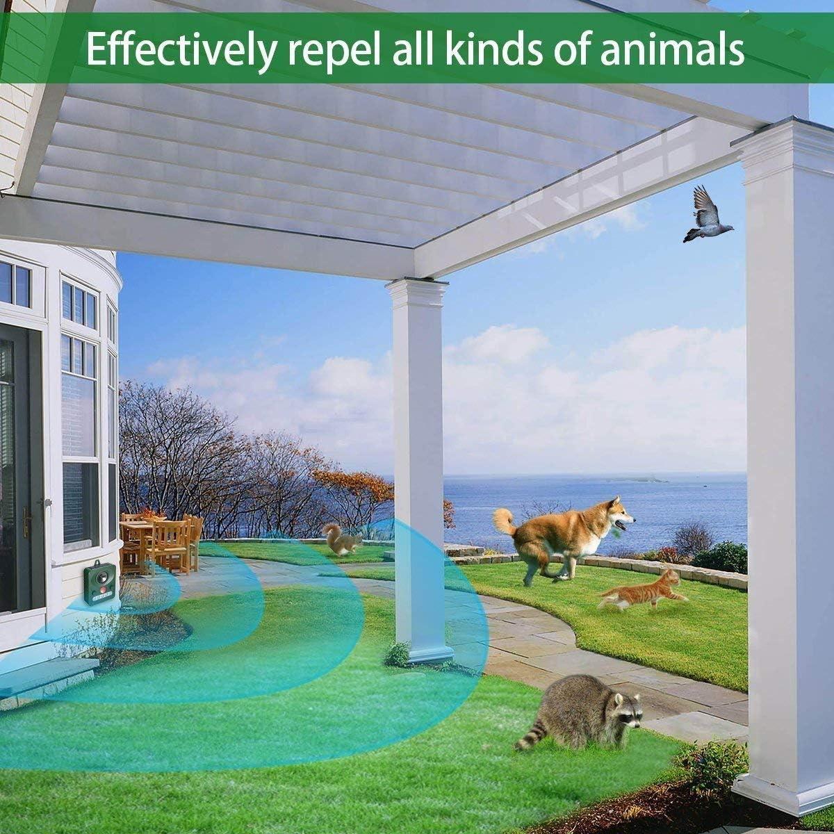 QKa Repelente Solar de Animales al Aire Libre, Repelente de plagas a Prueba de Agua Repelente ultrasónico de Animales con luz Intermitente LED, Proteja su jardín lejos de los Animales: Amazon.es: Deportes