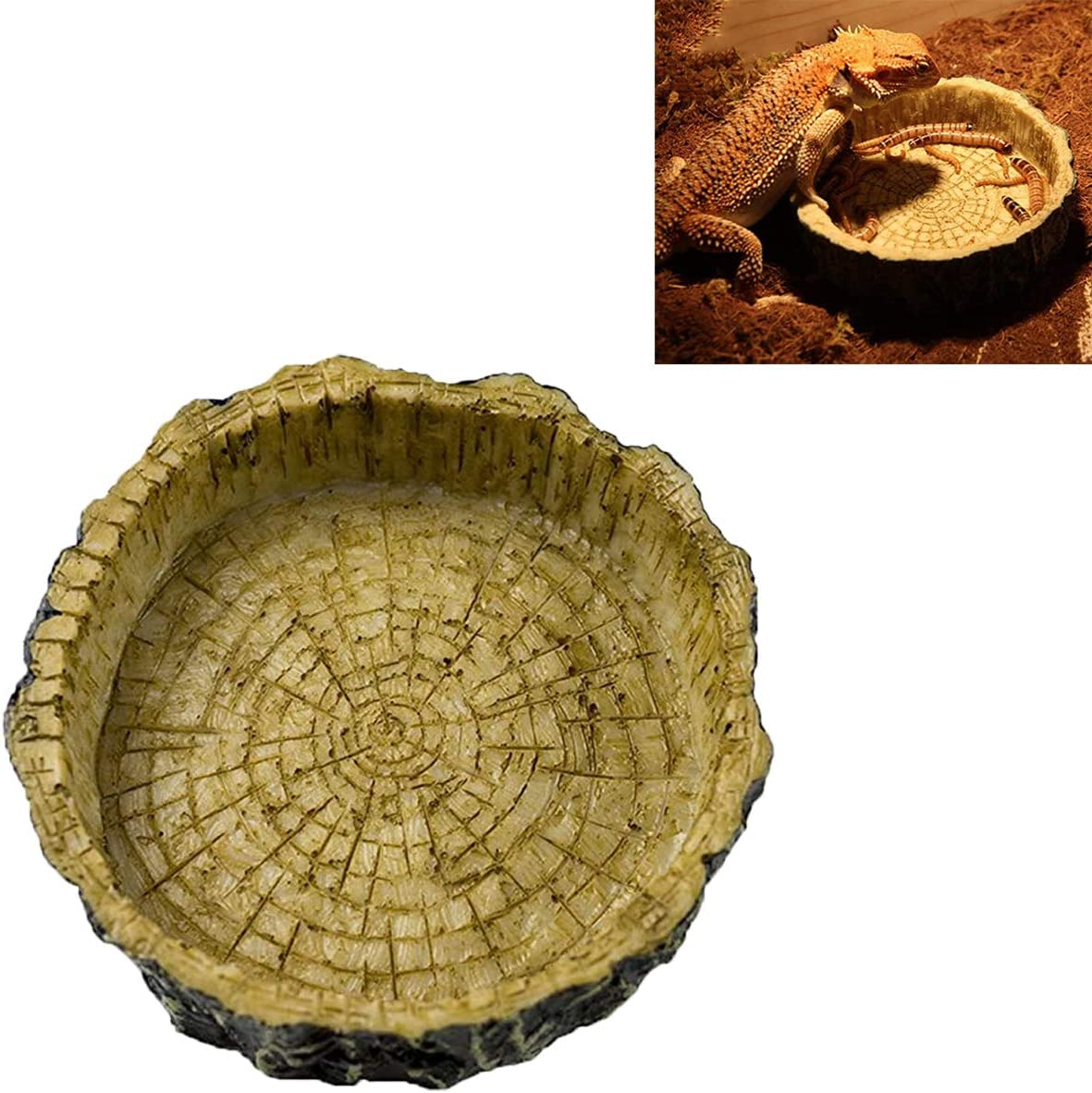Ailindany Reptile Bowl Tortoise Water Dish Food Bowl Feeders Water Dish Resin Made for Amphibians Gecko Snakes Lizard Chameleon
