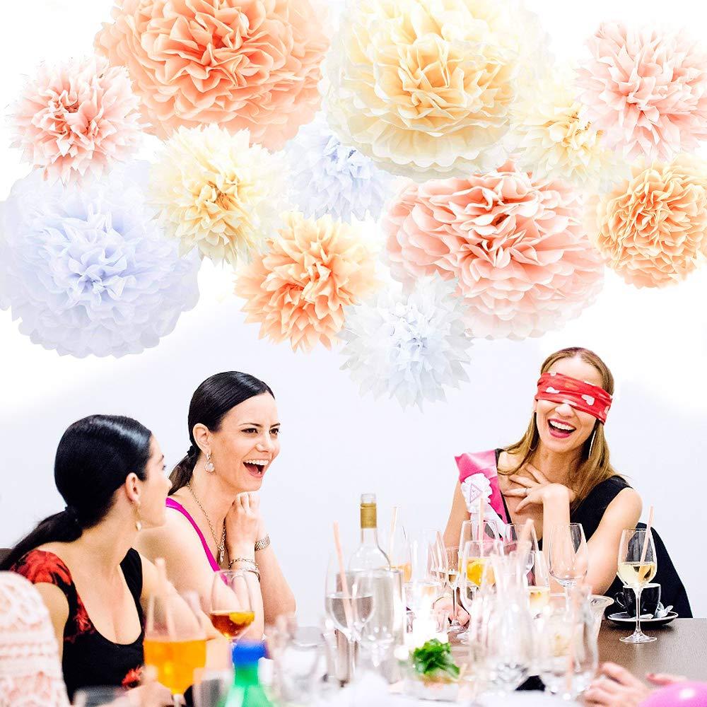 Seidenpapier Pompons Blau Weiss Pompoms Deko Bunt Blumen Hochzeit