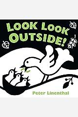 Look Look Outside Board book
