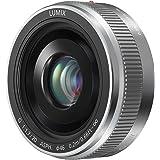 Panasonic H-H020AE-S - Objetivo para Panasonic Lumix G (distancia focal fija 40 mm, diámetro: 150 mm), plateado