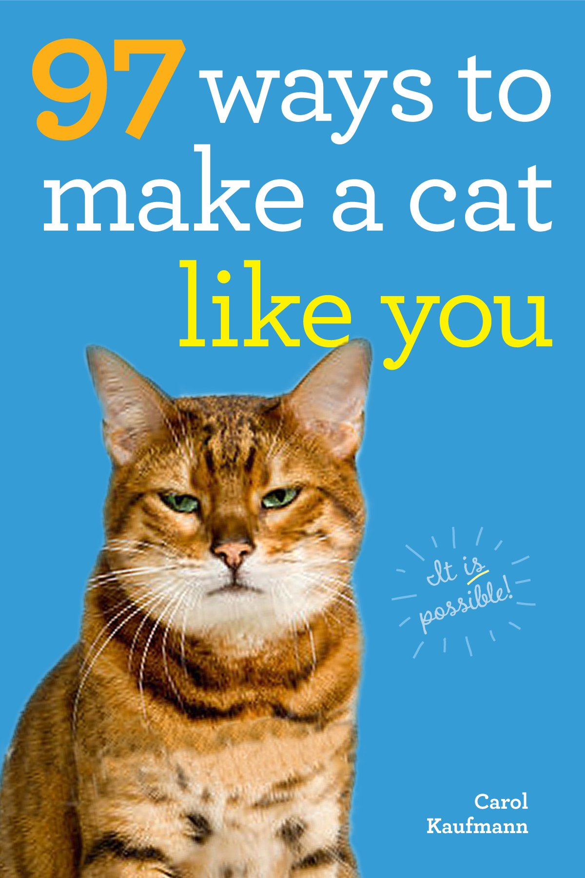 97 Ways to Make a Cat Like You Carol Kaufmann