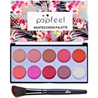 Sweat Proof Blusher Palette 10 Color Makeup Face Matte Powder Blush Pallet - as described, With Brush