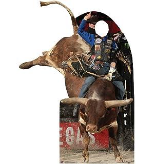"""Cowboy Hooey SILVER 4/"""" Car Decal Vinyl Sticker bull rider rodeo farm ranch *B49*"""