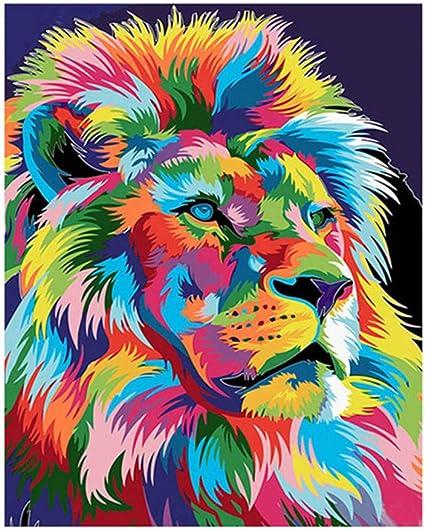 Belleza heyesupio Pintura por n/úmeros para Adultos Kit de Pintura acr/ílica DIY Color por n/úmeros para ni/ños Sin Marco 16 20 Pulgadas