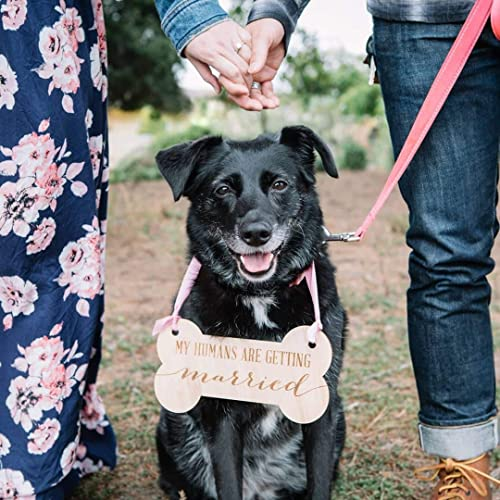 Amazon.com: Pet Sign for Engagement Save the Date Photography - Dog Save  the Date Sign for Wedding Pictures, Wedding Sign: Handmade