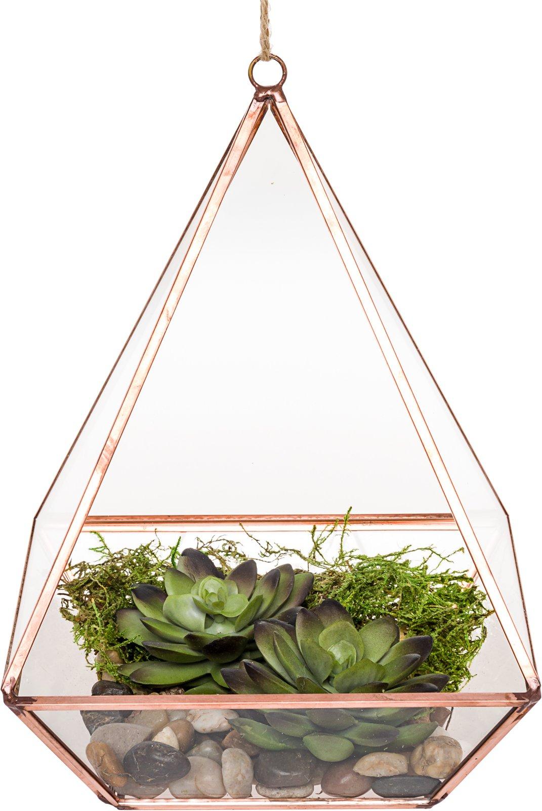 Mindful Design Glass Terrarium - Geometric Diamond Desktop Garden Planter by (Rose Gold) by Mindful Design