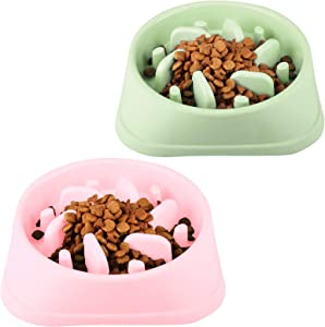 CAM2 Dog Bowl, Dog Cat Food Bowl, Pet Water Feeding Bowl/Slow Feeder Bowl for Outdoor Indoor
