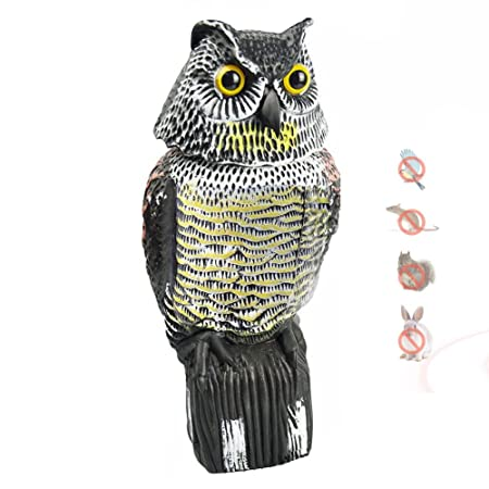 Espeedy Bird Pest Control Products Scarecrow Owl Decoy