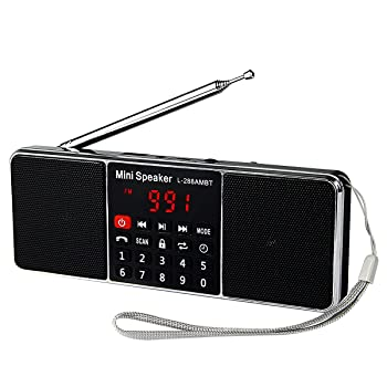 TIVDIO L-288 Portable AM FM Stereo Radio with Wireless MP3 Player Speaker