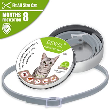 Dewel Cat Flea Collar And Tick Flea Control Treatment For Cat Adjustable Waterproof Protect For Your Cats 8 Month Effective Protection S Amazon Co Uk Pet Supplies