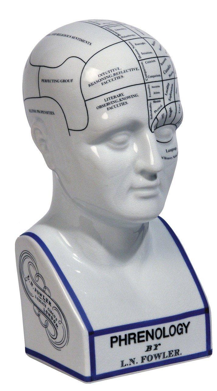 Authentic Models MG020 - Phrenologischer Kopf - Porzellan 14 x 16,5 x 29 cm