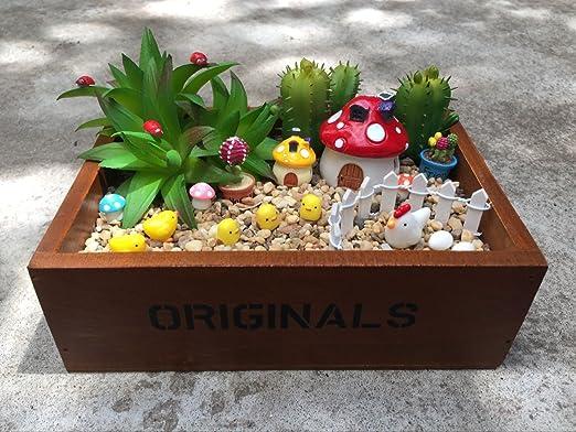 De madera Mini jardín caja de ventana, mini-factory carnosas maceta maceta caja de madera + adornos en miniatura: Amazon.es: Jardín