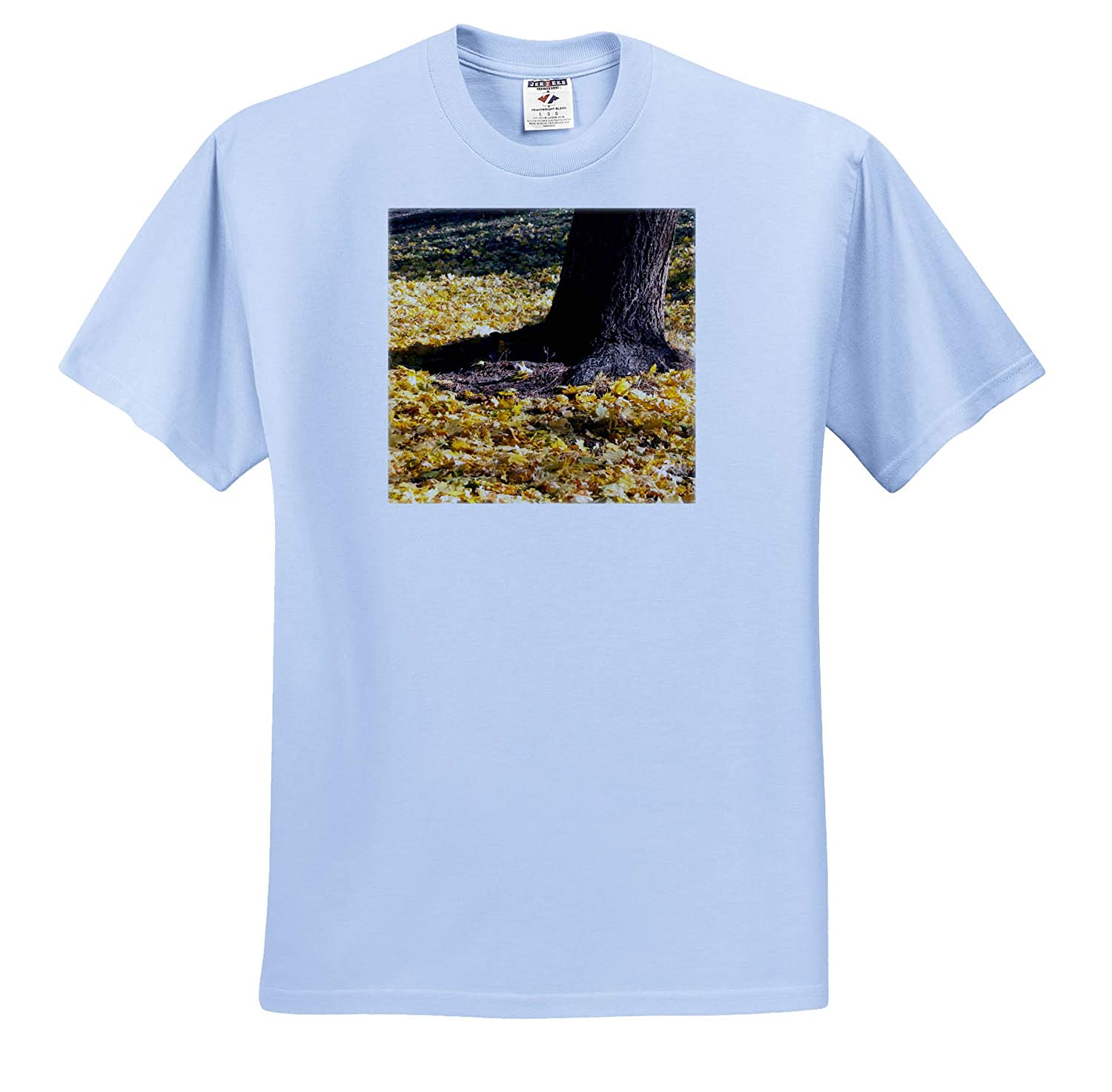 Leaves in Yellow and Orange at The Base of a Tree ts/_318866 3dRose Jos Fauxtographee- Fall Leaves Adult T-Shirt XL