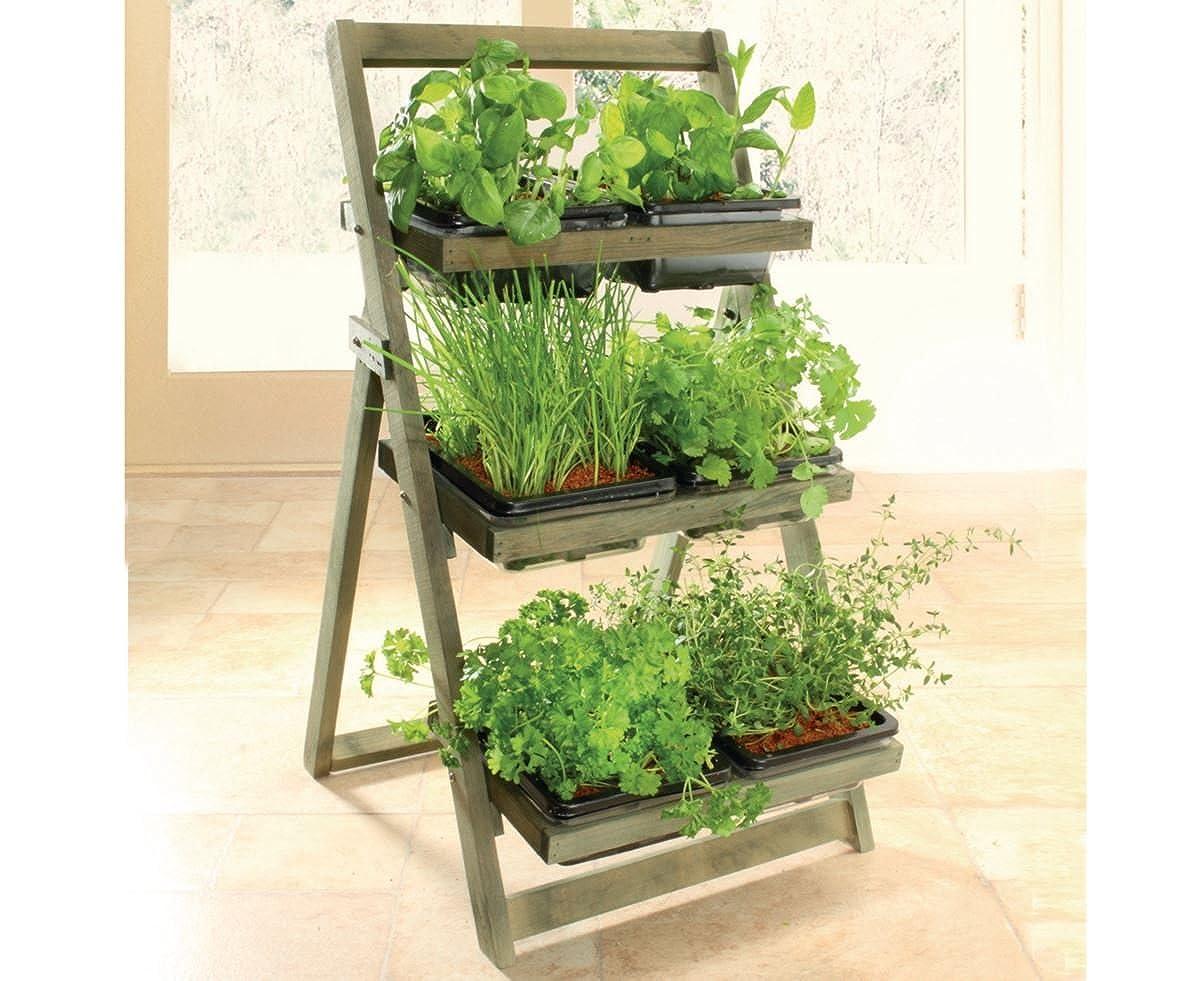 Kitchen Garden Herb Planter 6 Trays Wooden Rack For Indoor/Outdoor Burwells