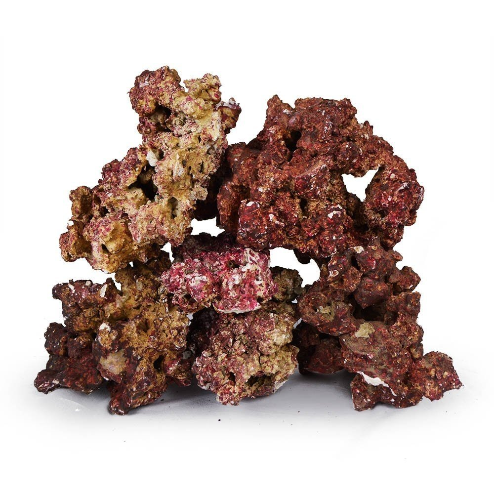 Real Reef Premium Live Rock For Saltwater Aquariums (20 LB) Mixed Sizes by Real Reef