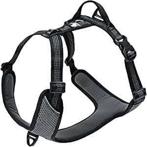 TRUE LOVE Dog Harness Outdoor Adventure II Reflective Vest 2 Leash Attachments Matching Leash Collar Available TLH6071 (Black, M: Chest 56-68cm/22-27in