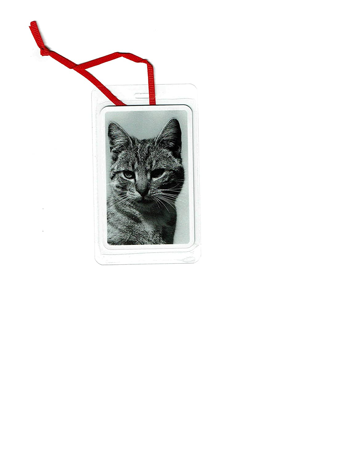 Amazon Com Tiger Striped Black And White Cat Ornament And Thinking Of You Greeting Card Handmade