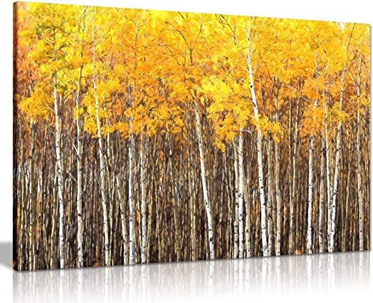 Yellow Grey Aspen Trees Forest Nature Oil Painting Canvas Wall Art Picture Print 36×24