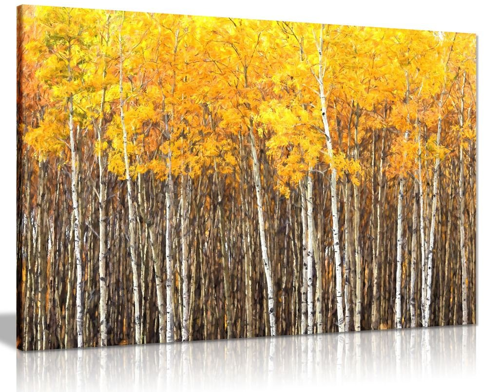 Yellow grey aspen trees forest nature oil painting canvas wall art picture print 36x24