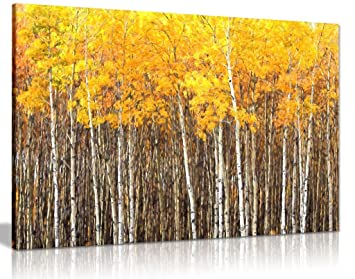 Yellow Grey Aspen Trees Forest Nature Oil Painting Canvas Wall Art