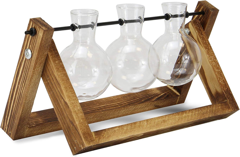 Vases /à bulbe avec support en bois Jardini/ère en verre de bureau Support /à plantes style vintage Jardini/ère de table hydroponique M/&W Station de propagation de 3 vases
