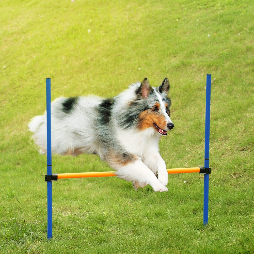 Anself Outdoor Dog Agility Training Equipment Jump Hurdle Bar Activity Agility Exercise Pole Set with Carrying Case by Anself