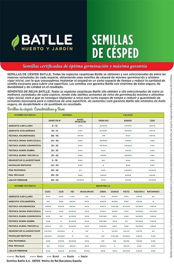 Semillas de Césped - Césped Universal Multiusos 1Kg - Batlle: Amazon.es: Jardín