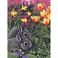 "Junior Small Paint By Number Kit 8.75""X11.75""-Spring Bunnies"