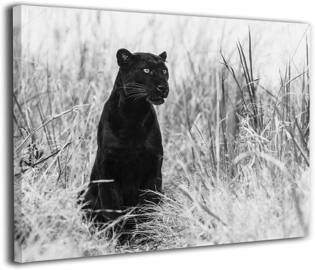 LP ART Canvas Print Wall Art Black and White Black Panther Bagheera Picture Painting for Living Room Bedroom Modern Home Decor Ready to Hang Stretched and Framed Artwork 16''x20''