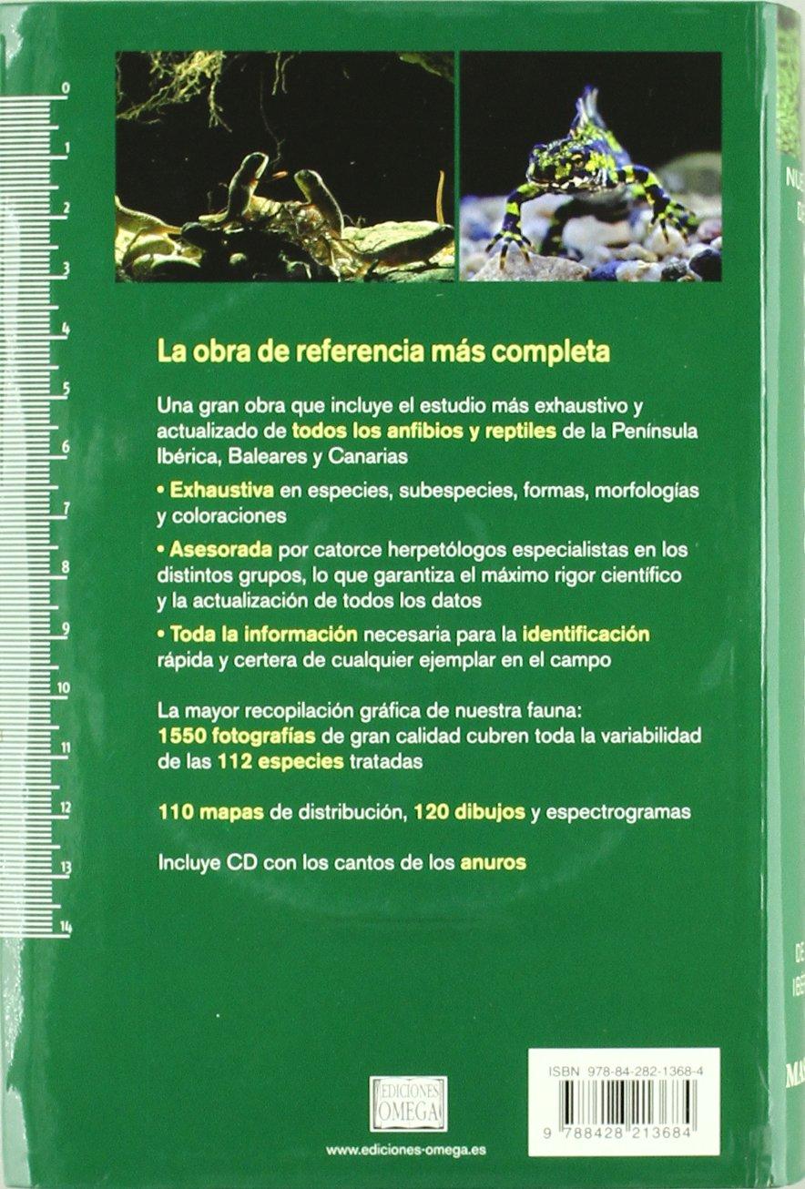 ANFIBIOS Y REPTILES PEN.IBERICA BAL.Y CAN. GUIAS DEL NATURALISTA-REPTILES - ANFIBIOS-TERRARIOS: Amazon.es: MASO, A. Y PIJOAN, M., PIJOAN, M.: Libros