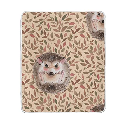 Amazon.com  Animal Hedgehog Cute Throw Blanket for Bed Couch Chair ... 676abc2c54