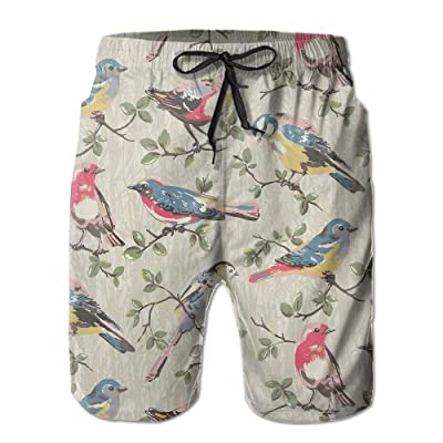 Men's Shorts Swim Beach Trunk Summer Birds Painting Fit Fashion Shorts With Pockets