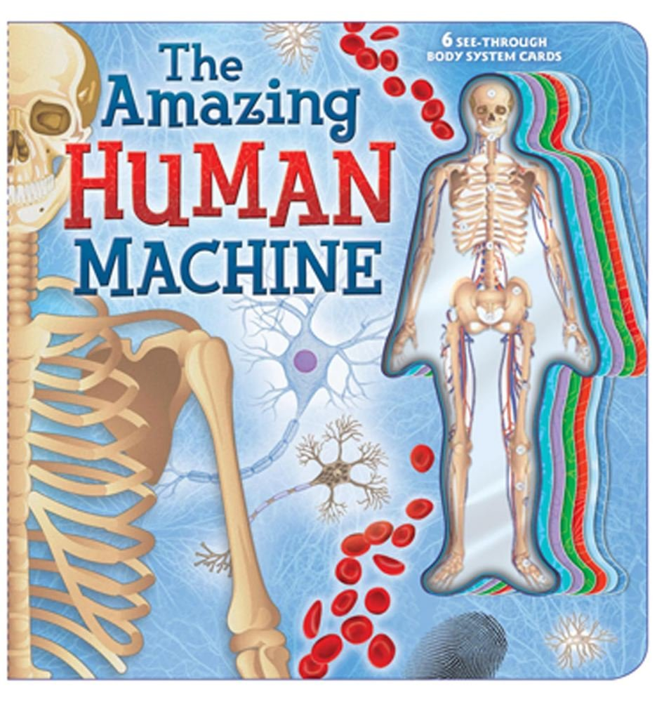 The Amazing Human Machine: Book with Acetate Body System Cards: Lori ...
