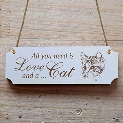 Cartel «All You Need is Love and a CAT » a partir de 15 x 5 ...