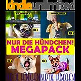 Nur die Hündchen! (MEGAPACK vol.1-4)