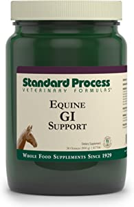 Standard Process Equine GI Support - Whole Food Horse Supplies for Digestive Health and Liver Support with Magnesium Citrate, Buckwheat, Sunflower Lecithin, Kale, Inulin, Brussels Sprouts - 30 Ounce