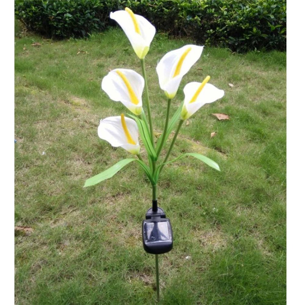 Elstey Calla Lily Flower Solar Power Lights Outdoor Waterproof LED Lamps Garden Yard Lawn Path Landscape Decoration Illumination (5 LED) by Elstey