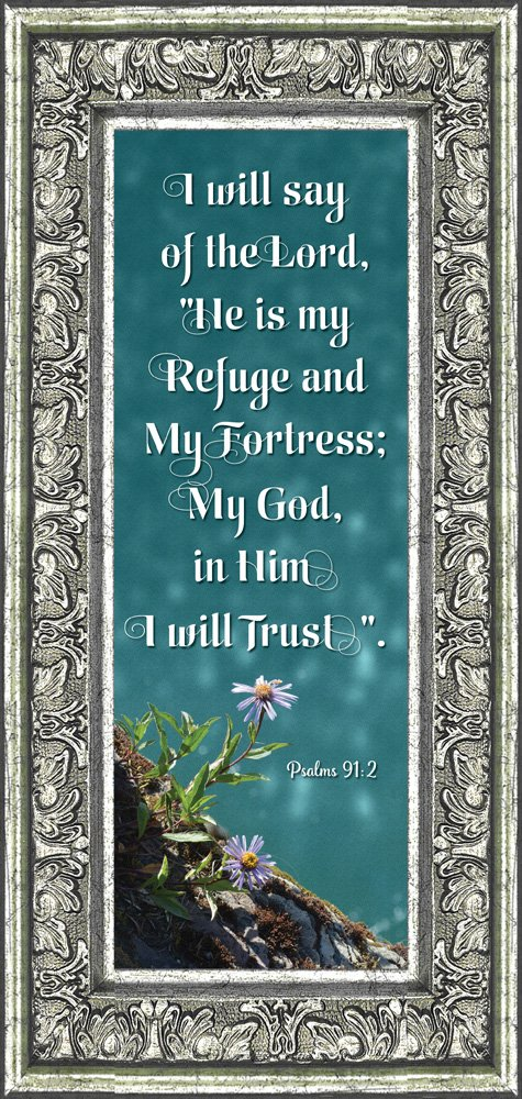 In Him I Trust, Gifts with Scripture, Christian Picture Frame, 6x12 7325 (6x12, Silver Ornate)
