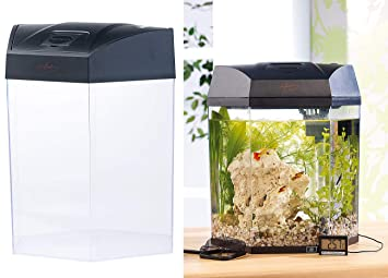 Infactory - Tubular panorámica con diseño de acuario luz 19 L: Amazon.es: Productos para mascotas