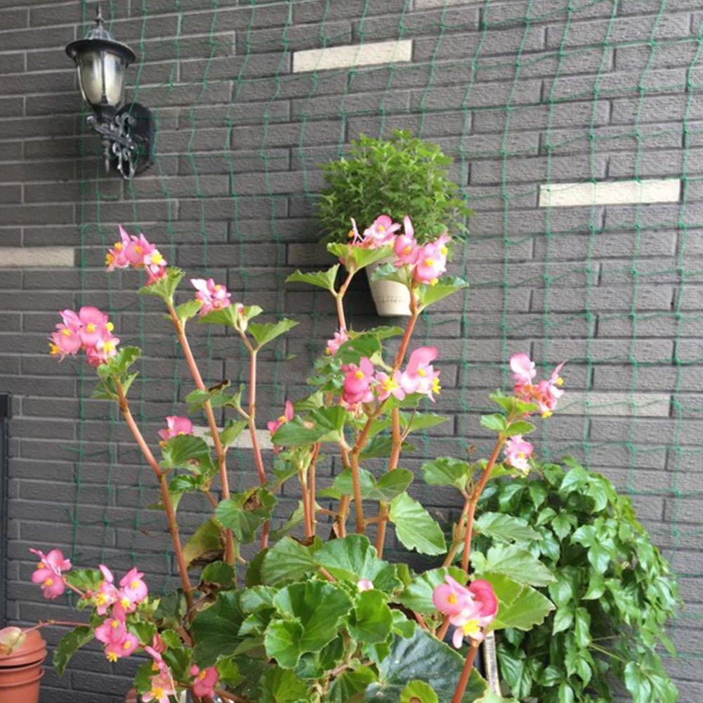 vigne et l/égumes  1,8/x 1,8/m Filet de treillis en nylon pour plantes grimpantes