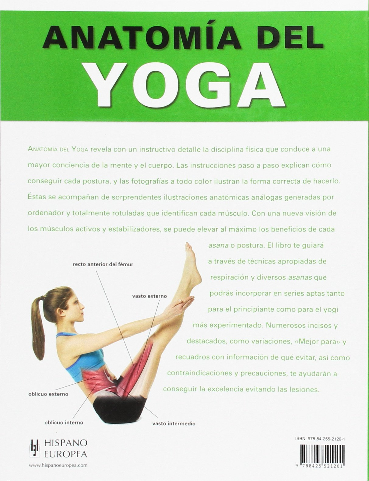 Anatomía del yoga: Abigail Ellsworth: 9788425521201: Amazon.com: Books