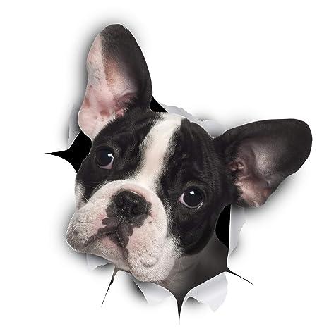Winston & Bear -Pack 2 - adhesivos 3D Perro Bulldog Francés blanco y negro Stickers