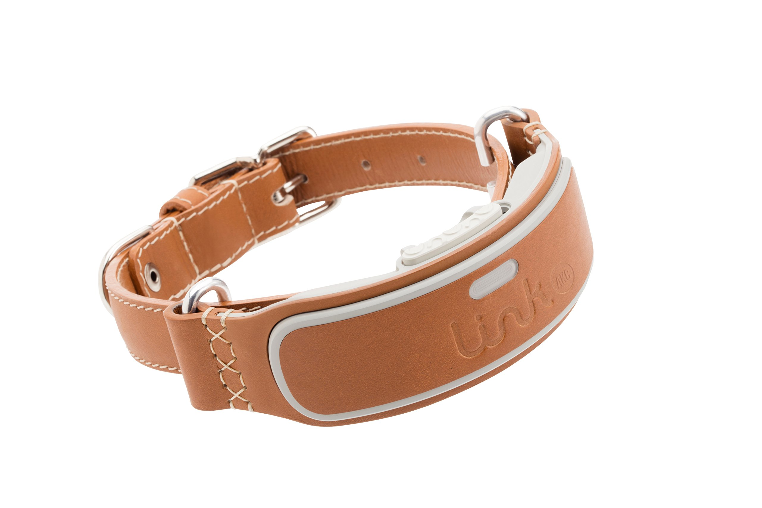 LINK AKC Smart Dog Collar - GPS Location Tracker, Activity Monitor, and More, Large (KITTN03)