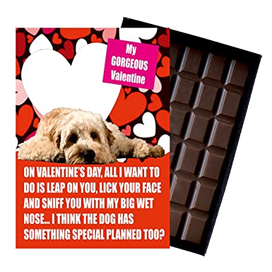 2401f2f16727 Cockapoo Valentines Day Gift for Pet Owner or Dog Lovers 85 Gram Best Boxed  Belgian Milk ...