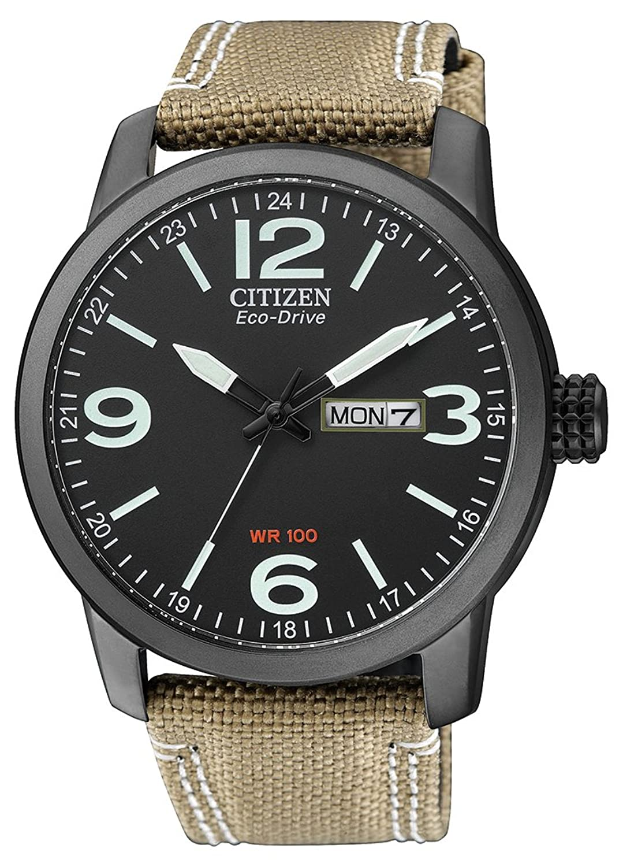 Citizen Herren-Armbanduhr Elegance Analog Quarz - Eco-Drive (One Size - schwarz)