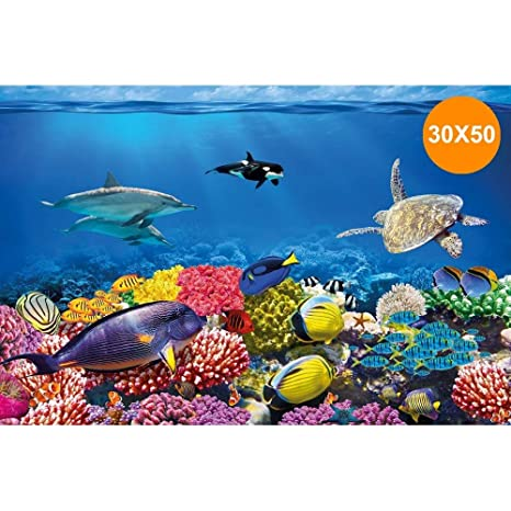 Trade Shop traesiocarta Decorativa para Acuario 30 x 50 cm Panel Decorativo Acuarios Fondo