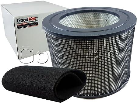GOODVAC - Kit de Repuesto para Filtro Queen Defender 4000, 1 Filtro de Aire HEPA de Repuesto + 1 Filtro de prefiltro ...